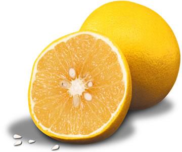 Grapefruit mit Grapefruitkern